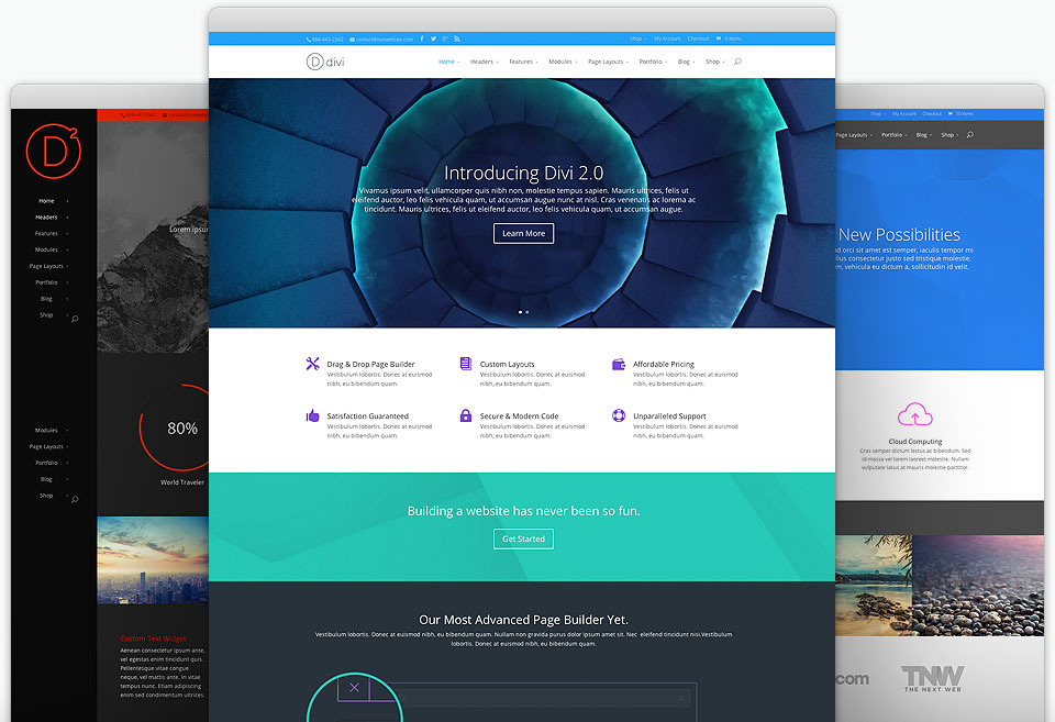 divi top wordpress theme